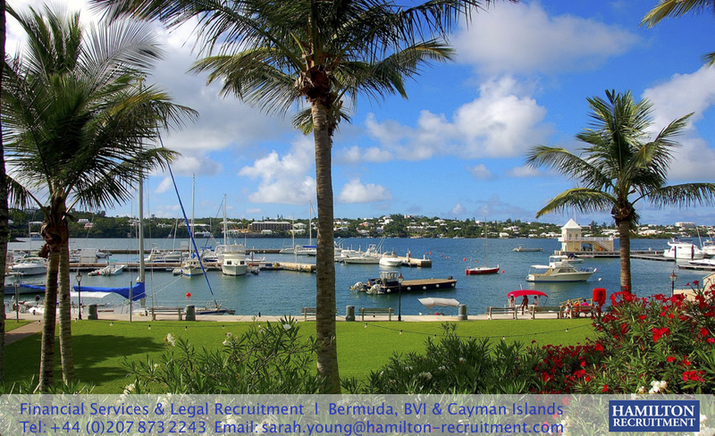 HR308: Assistant Manager, Corporate Restructuring | Cayman Islands ...
